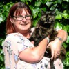 Fearless feline crowned 'Cat of the Year'