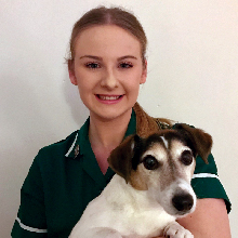 Lauren <br> RVN MBVNA : Deputy Head Registered Veterinary Nurse
